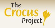 Výsledek obrázku pro projekt Krokus